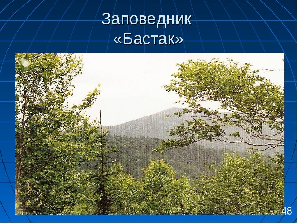 Заповедник «Бастак» 48