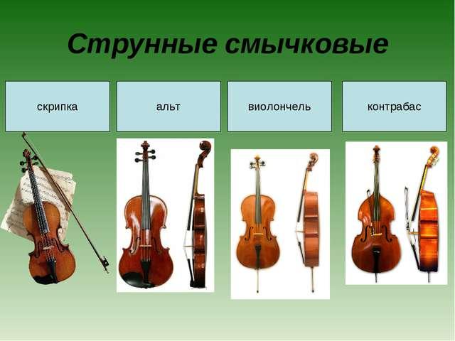 Струнные смычковые скрипка альт виолончель контрабас