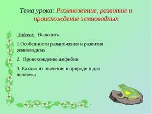 Тема урока: Размножение, развитие и происхождение земноводных Задачи: Выяснит