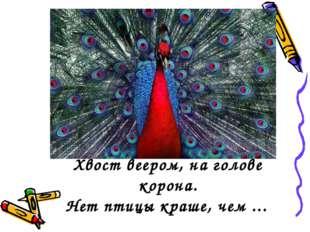 Хвост веером, на голове корона. Нет птицы краше, чем ...
