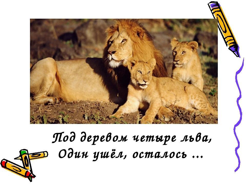 Под деревом четыре льва, Один ушёл, осталось ...