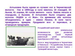 Алтыновка была одним из лучших сел в Черниговской волости. Уже в 1899году в