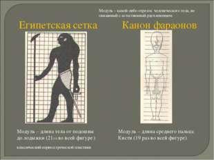 Модуль – какой-либо отрезок человеческого тела, не связанный с естественный р