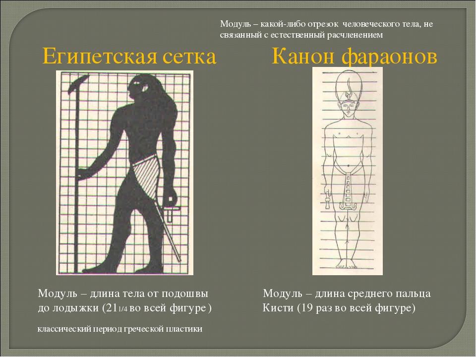 Модуль – какой-либо отрезок человеческого тела, не связанный с естественный р...