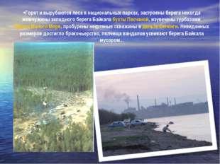 Горят и вырубаются леса в национальных парках, застроены берега некогда жемчу