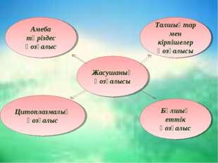 Амеба тәріздес қозғалыс Цитоплазмалық қозғалыс Бұлшық еттік қозғалыс Талшықта