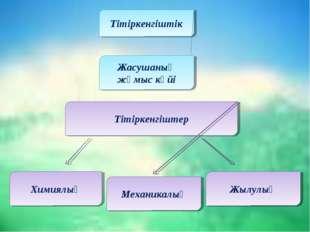Тітіркенгіштік Механикалық Химиялық Жылулық Жасушаның жұмыс күйі Тітіркенгіштер