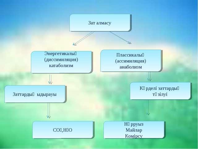 Зат алмасу Энергетикалық (диссимиляция) катаболизм Плассикалық (ассимиляция)...