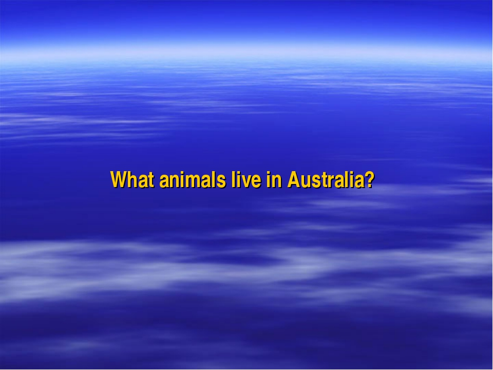 What animals live in Australia?