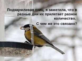 Подкармливая птиц, я заметила, что в разные дни их прилетает разное количест