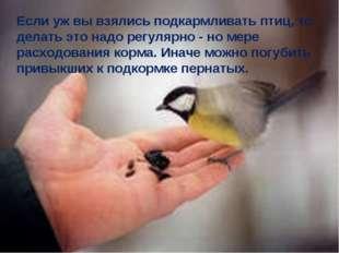 Если уж вы взялись подкармливать птиц, то делать это надо регулярно - но мере
