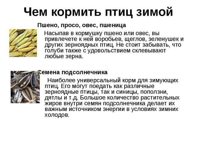 Чем кормить птиц зимой Пшено, просо, овес, пшеница Насыпав в кормушку пшено и...