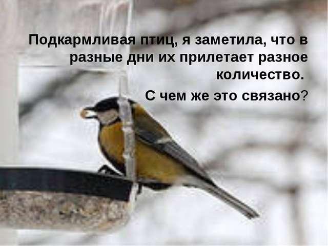 Подкармливая птиц, я заметила, что в разные дни их прилетает разное количест...