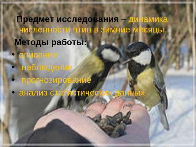 Предмет исследования–динамика численности птиц в зимние месяцы. Методы раб...