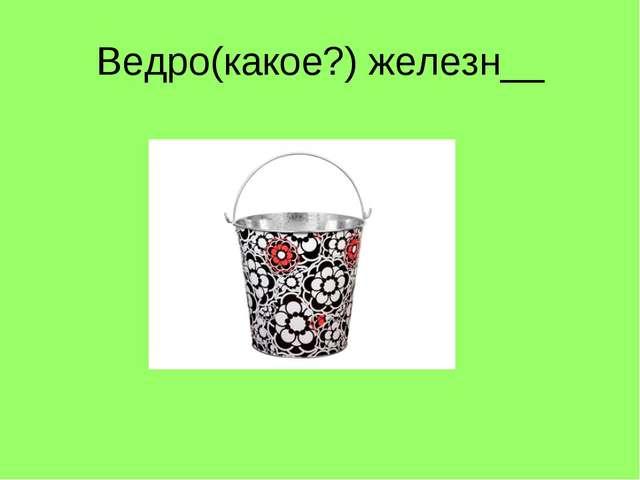 Ведро(какое?) железн__