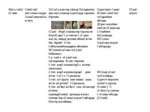 Жаңа сабақ 12 минСабақтың мақсатын талдау қызығушылығын оятуТақтаға кластер