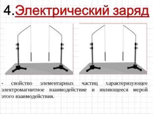- свойство элементарных частиц характеризующее электромагнитное взаимодействи