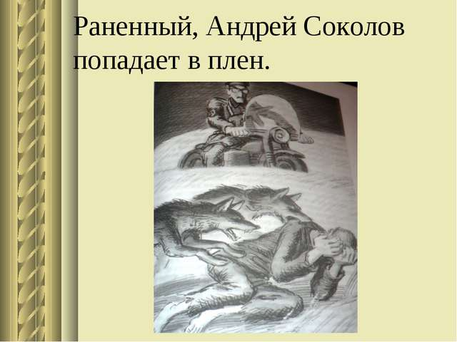 Раненный, Андрей Соколов попадает в плен.