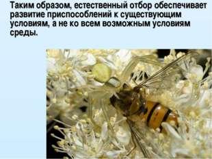 Таким образом, естественный отбор обеспечивает развитие приспособлений к сущ