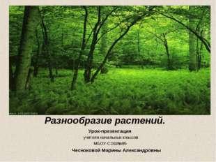Разнообразие растений. Урок-презентация учителя начальных классов МБОУ-СОШ№85
