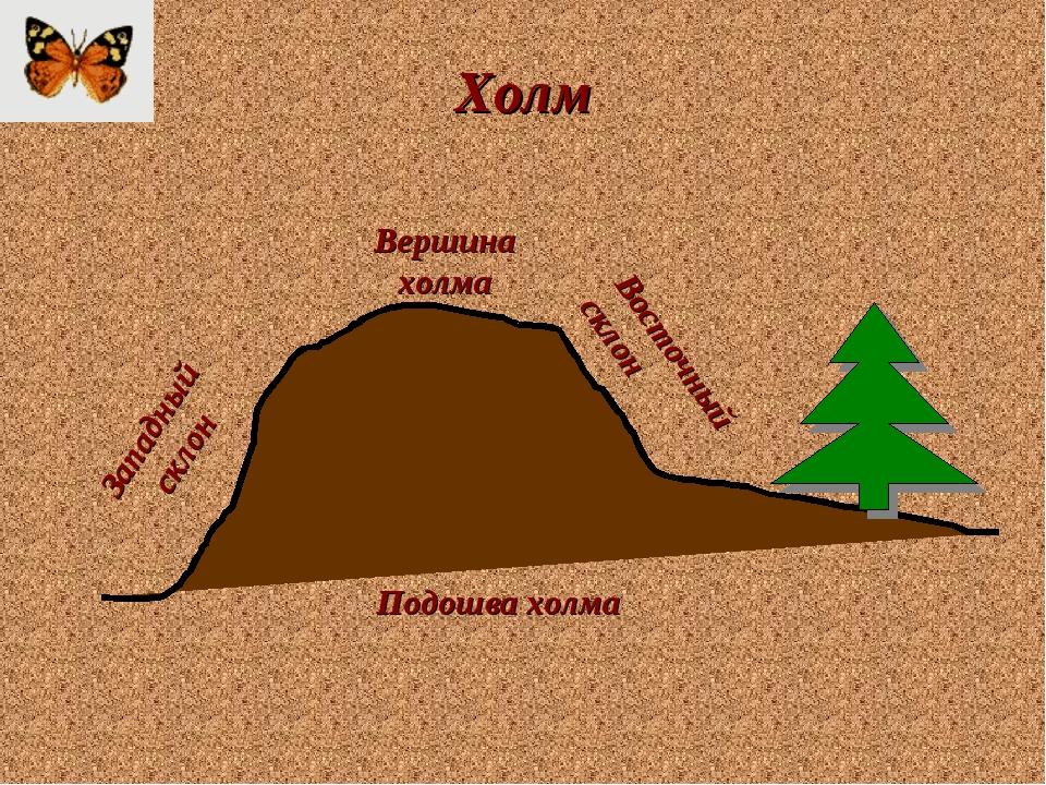 Холм Подошва холма Вершина холма Западный склон Восточный склон