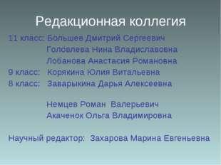 Редакционная коллегия 11 класс: Большев Дмитрий Сергеевич Головлева Нина Влад
