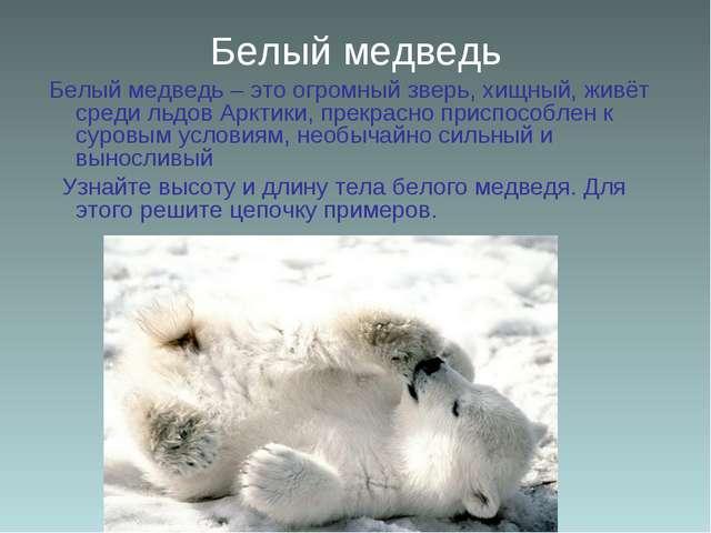 Белый медведь Белый медведь – это огромный зверь, хищный, живёт среди льдов А...