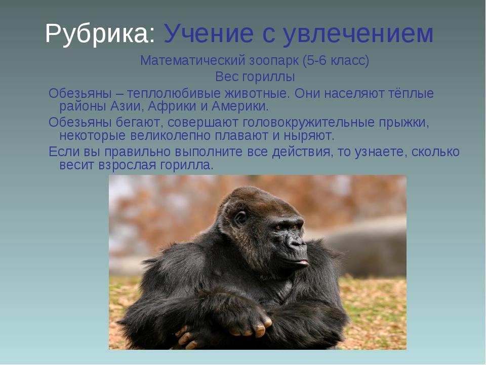 Рубрика: Учение с увлечением Математический зоопарк (5-6 класс) Вес гориллы О...