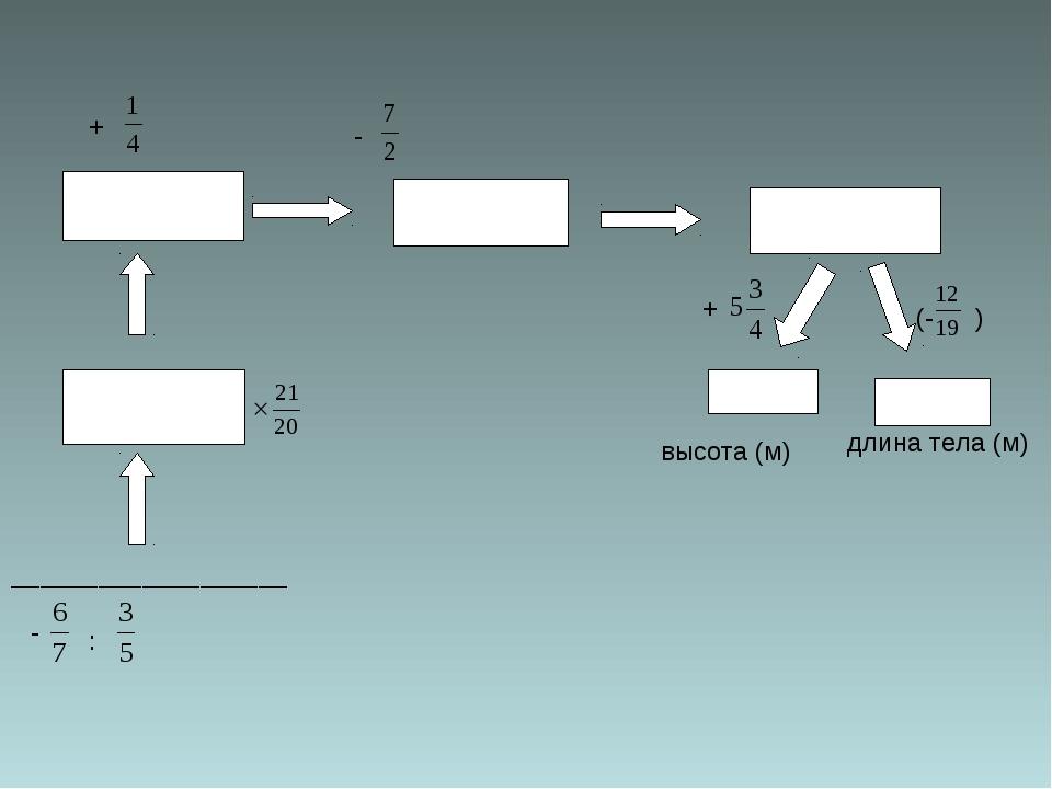 ___________________ : + - + (- ) высота (м) длина тела (м) -