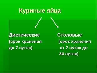Куриные яйца Диетические Столовые (срок хранения (срок хранения до 7 суток)