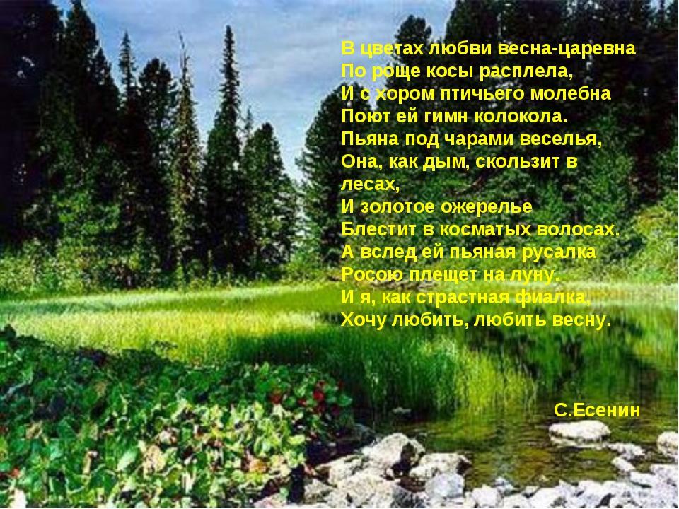 В цветах любви весна-царевна По роще косы расплела, И с хором птичьего молебн...