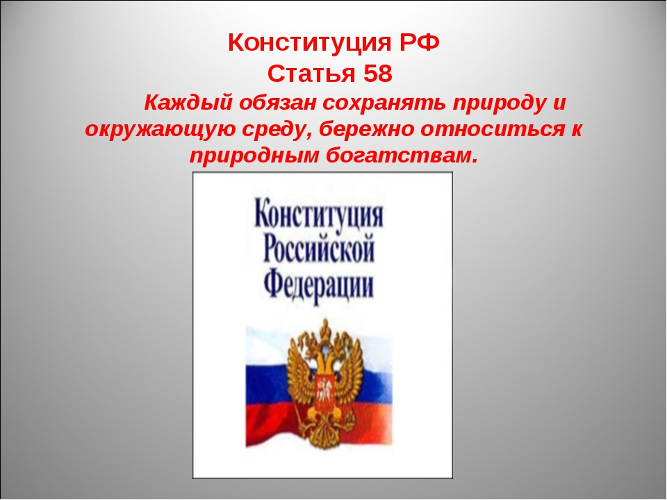 Конституция РФ Статья 58  Каждый обязан сохранять природу и окружающую...