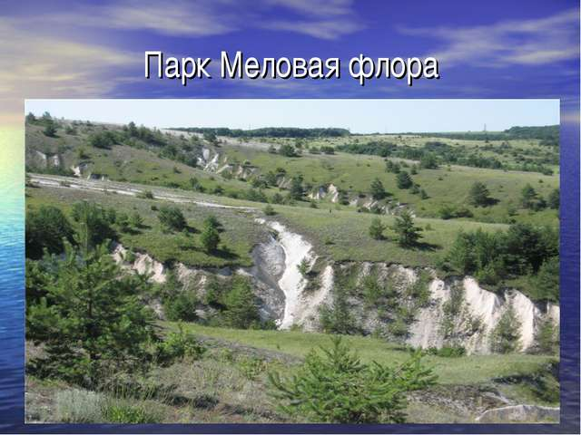 Парк Меловая флора