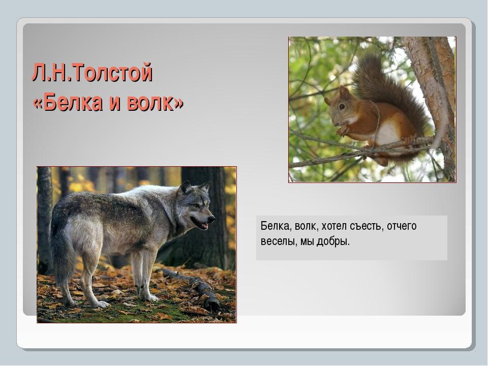 Л.Н.Толстой «Белка и волк» Белка, волк, хотел съесть, отчего веселы, мы добры.