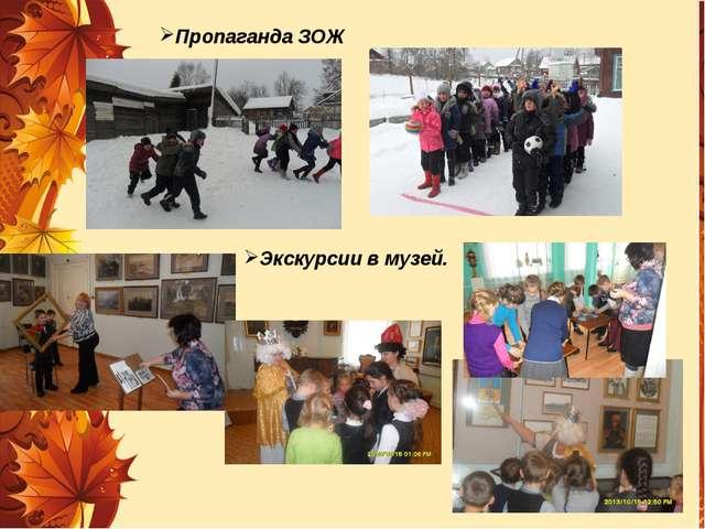 Пропаганда ЗОЖ Экскурсии в музей.