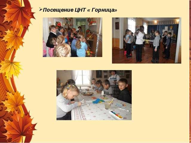 Посещение ЦНТ « Горница»