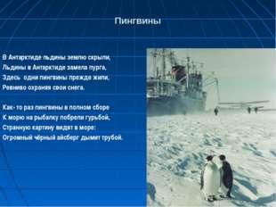 Пингвины В Антарктиде льдины землю скрыли, Льдины в Антарктиде замела пурга,