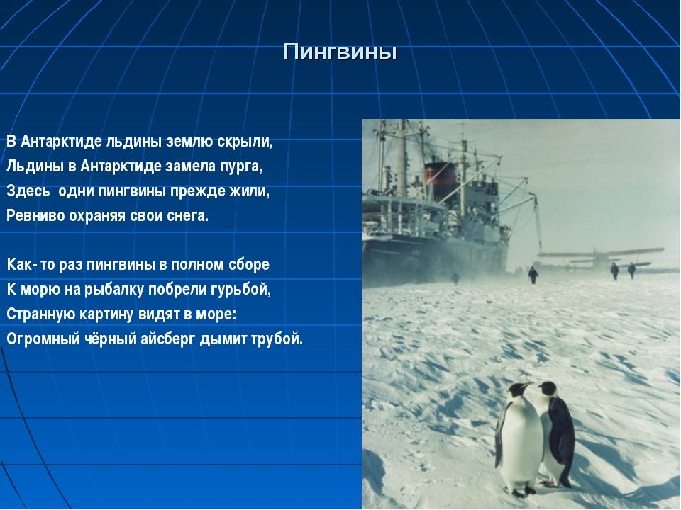 Пингвины В Антарктиде льдины землю скрыли, Льдины в Антарктиде замела пурга,...