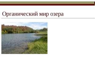 Органический мир озера Основными обитателями озера являются рыбы: форель, пло