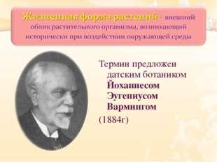 Термин предложен датским ботаником Йоханнесом Эугениусом Вармингом (1884г)