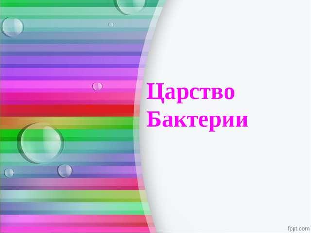 Царство Бактерии