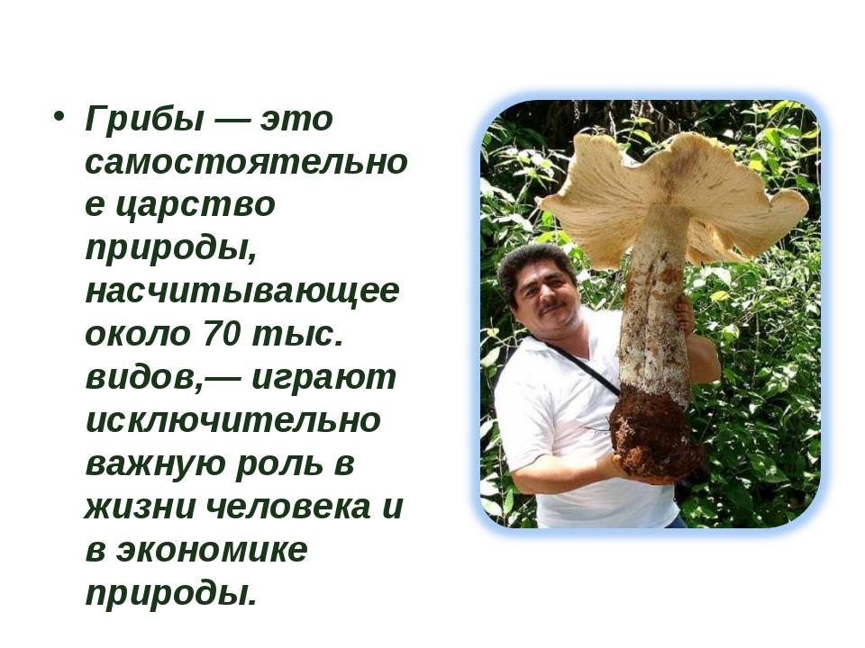 Грибы — это самостоятельное царство природы, насчитывающее около 70 тыс. вид...