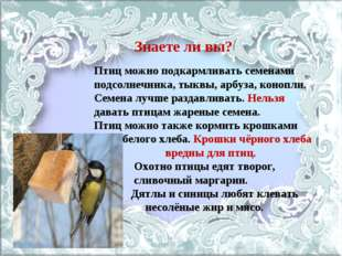 Знаете ли вы? Птиц можно подкармливать семенами подсолнечника, тыквы, арбуза,