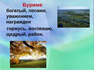 Буриме богатый, лесами, уважением, награжден горжусь, воспеваю, щедрый, район.