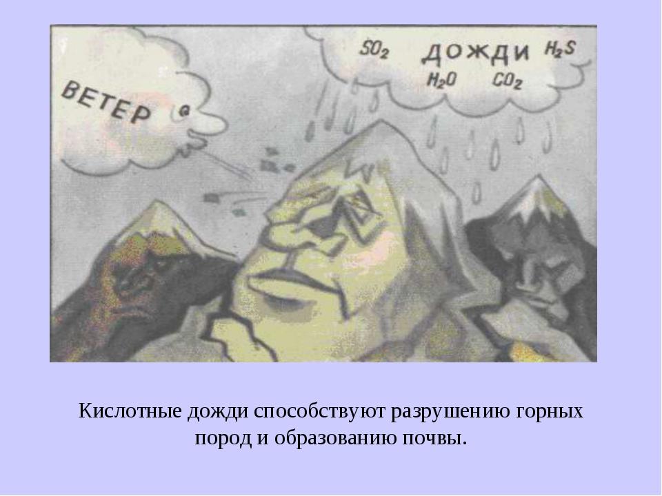 Кислотные дожди способствуют разрушению горных пород и образованию почвы.
