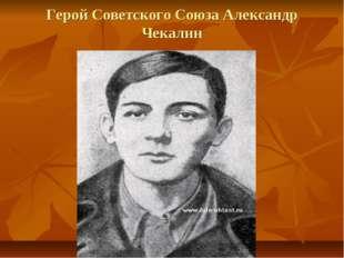 Герой Советского Союза Александр Чекалин