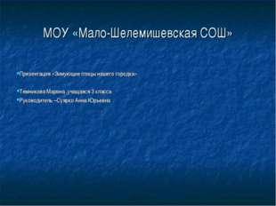 МОУ «Мало-Шелемишевская СОШ» Презентация «Зимующие птицы нашего городка» Темн
