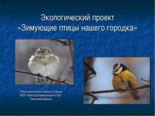 Экологический проект «Зимующие птицы нашего городка» Работу выполнила ученица