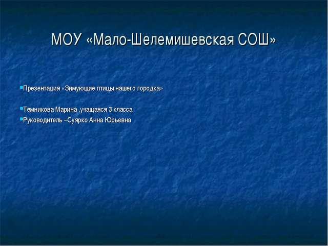 МОУ «Мало-Шелемишевская СОШ» Презентация «Зимующие птицы нашего городка» Темн...