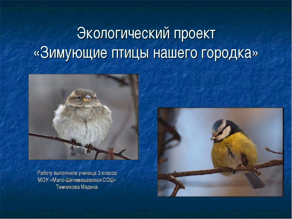 Экологический проект «Зимующие птицы нашего городка» Работу выполнила ученица...